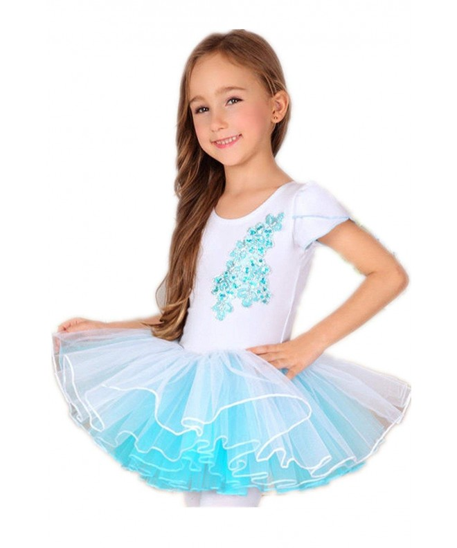 Abroda embroidery Sequins Princess Dancewear