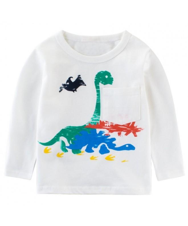 Niyage Boys Dinosaur T Shirts Graphic