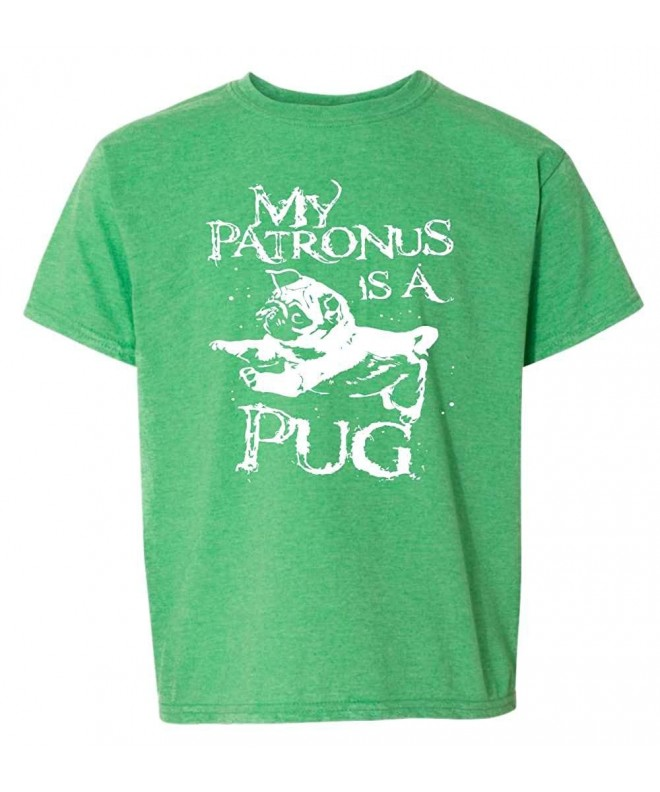 Patronus Potter Fandom T Shirt Ladies