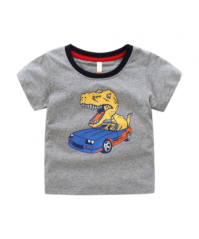 SAYM Little Toddler Dinosaur T Shirts