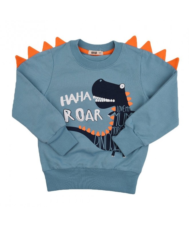 interming Toddler Dinosaur Sweatshirt Pullover