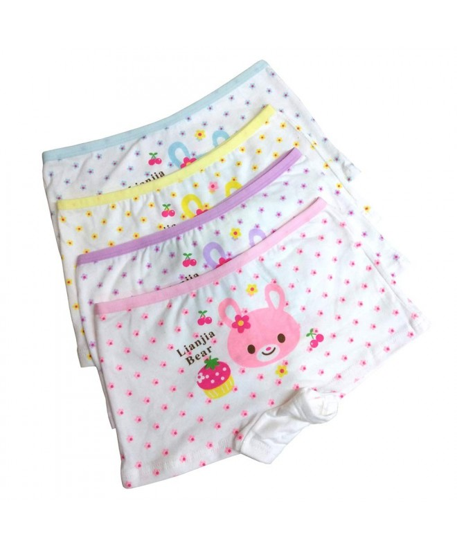 Toddler Boyshort Hipster Underwear Princess